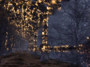shadedpathwinternight2